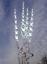 orchideenstäbe vallas 41-45 cm-lauschaer vidrio-hecho a mano Je4 stk
