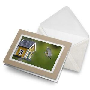 Greetings-Card-Biege-Flying-Blue-Tit-Bird-House-Garden-21225