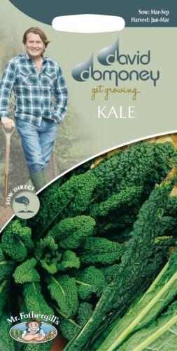 Mr Fothergills David Domoney Kale Vegetable 400 Seeds Black Tuscany