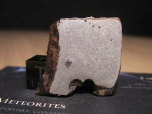 Meteorite-NWA-11530-Ungrouped-Iron-Recrystallized-with-Stary-inclusions