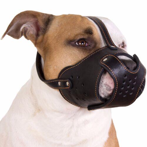 Leather Dog Muzzle PitBull Pit Bull AmStaff Basket Staffordshire Terrier