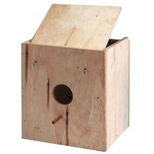 Nido-de-madera-de-pino-para-ninfas-fabricado-artesanalmente
