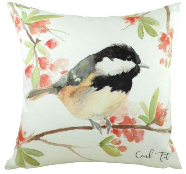2cf5af03751 Evans Lichfield British Birds Coal TIT 17