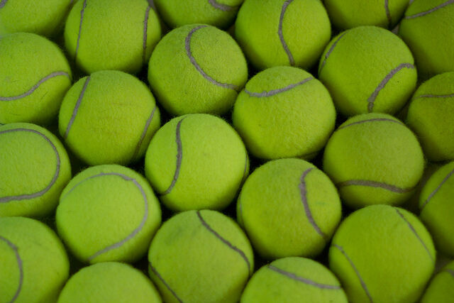 50 NEW TENNIS BALLS BRIGHT GREEN CRICKET  DOG TOYS BEACH