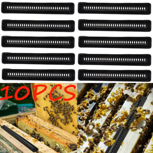 10pcs Black Small Bee Hive Beetle BeeHive Beetle Trap Beekeeping T RBY