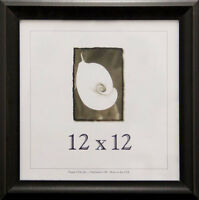 Wood Picture Frame 12x12 W/real Glass - 4 Color Options