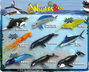 DeAgostini-Whales-amp-Co-Maxxi-Edition-aussuchen-aus-allen-16-Walen