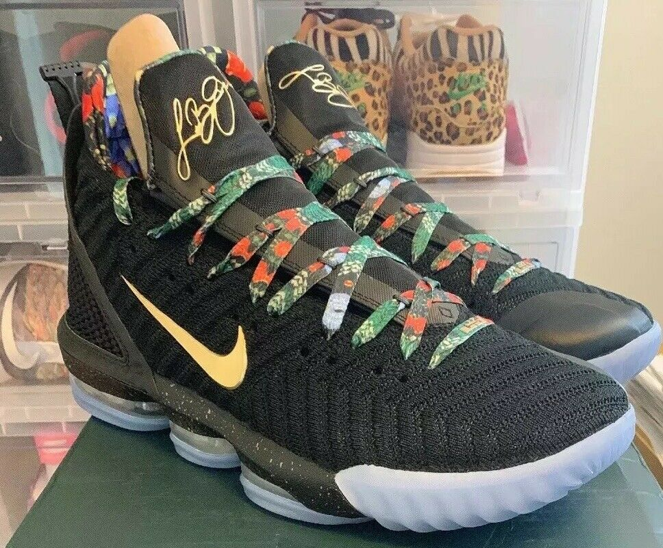 Nike Lebron XVI 16 Watch The Throne WTT Size 13 DS