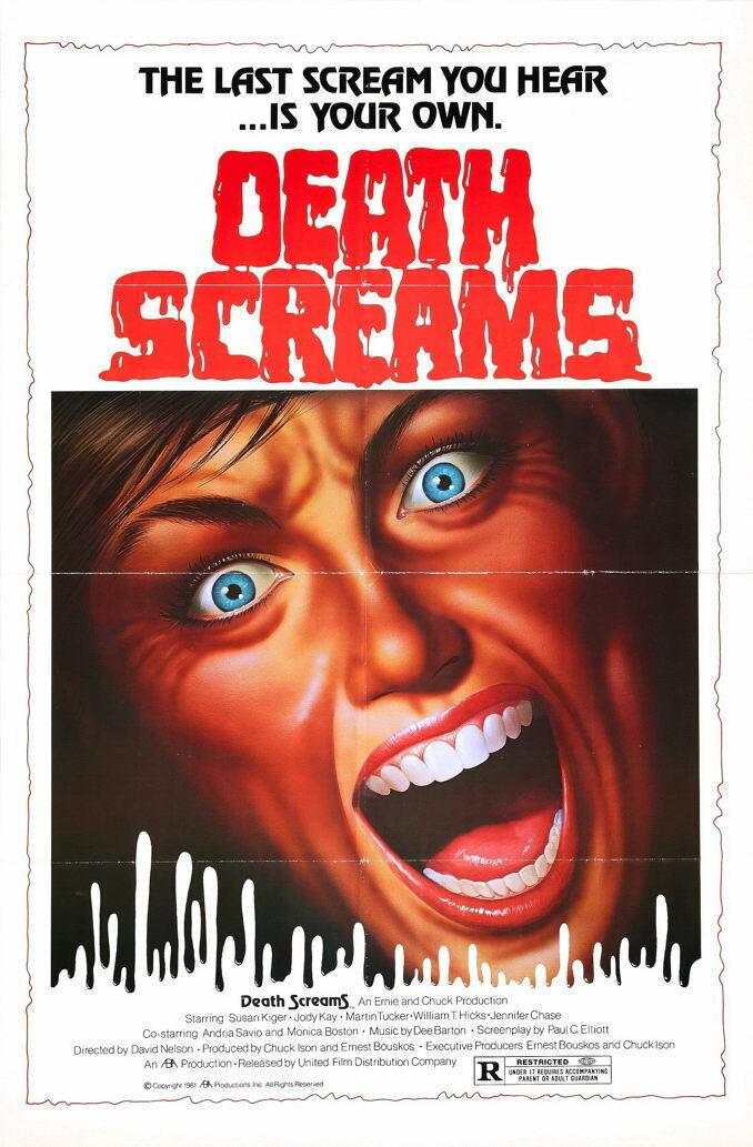 G2850 Death Screams Sussan Kiger Movie VHS Vintage Laminated Poster UK