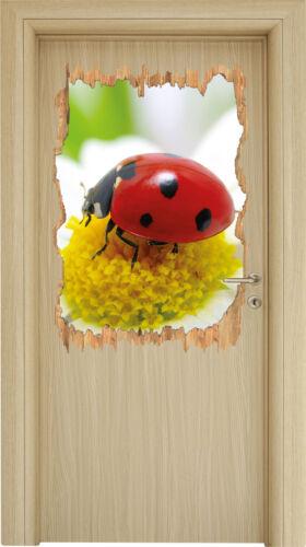 Marienkäfer auf Gänseblümchen 3D-Look Holzbruch Wandtattoo Aufkleber-Sticker