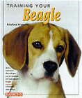 Training Your Beagle by Kristine Kraeuter (Paperback, 2001)