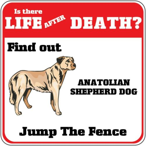 Crossing Sign Anatolian Shepherd Dog Life After Death Jump Fence Cross Xing