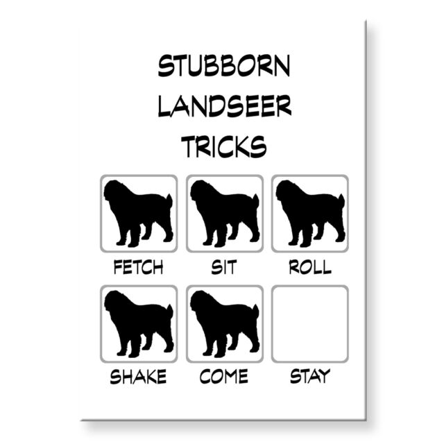 AUSTRALIAN CATTLE DOG Stubborn Tricks FRIDGE MAGNET Steel Case Funny