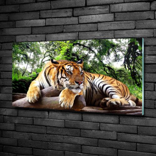 Glas-Bild Wandbilder Druck auf Glas 100x50 Deko Tiere Tiger Felsen