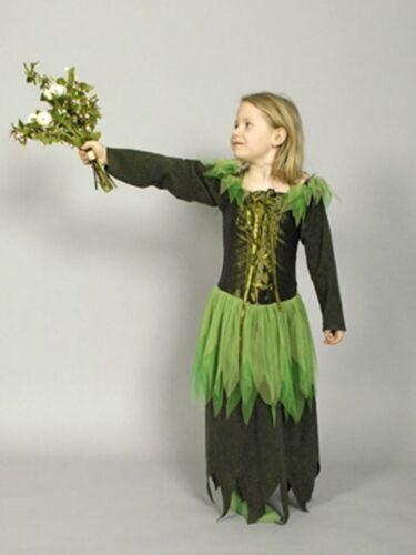 Enfants Costume wiesenfee Conte De Fées Costume Carnaval