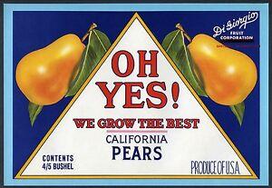 YUBA ORCHARD~ORIGINAL 1960s MARYSVILLE CALIFORNIA VINTAGE PEAR FRUIT CRATE LABEL