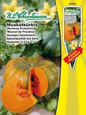 Muskatkürbis 'Muscat de Provence' Cucurbita moschata Kürbis Hokkaido Samen 40334