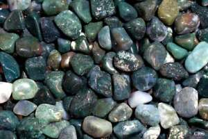 1LB-Green-Moss-Agate-Tumbled-Gemstones-Wholesale-Bulk-TRAGR-16-7L20