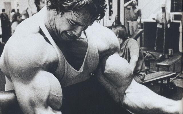 "34 Arnold Schwarzenegger - Bodybuilder Mr Olympia Universe 22""x14"" Poster"