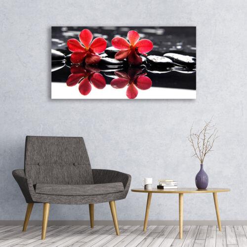 Leinwand-Bilder Wandbild Canvas Kunstdruck 120x60 Blumen Steine Pflanzen