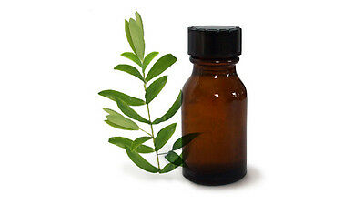 Tea Tree Oil Diluted 17% With Mineral Oil Ready for Skin/Vaginal Use