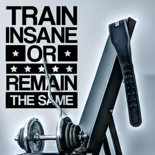TRAIN INSANE Motivational Gym Wall Decal Sticker Inspirational Office Decor