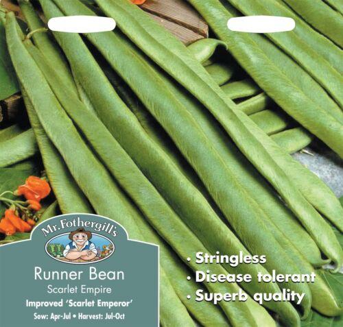 50 graines Mr fothergills-légumes-haricot écarlate empire sans fil