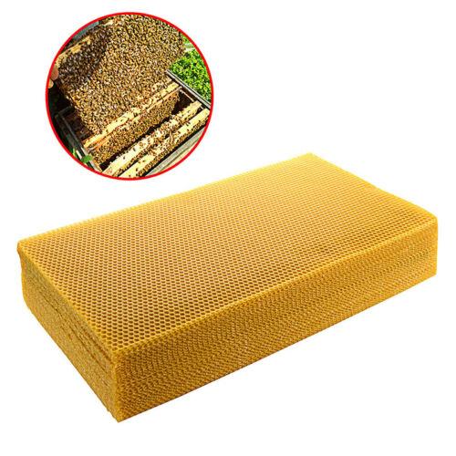 10 Pcs 200x415mm Waben Wachs Rahmen Bienenzucht Make-Up Honig Biene Hive Zubehör