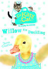 Dr KittyCat is Ready to Rescue: Willow the Duckling by Jane Clarke (Paperback, 2015)