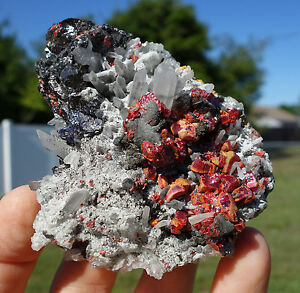 HUARON-Clear-Quartz-Points-w-Crimson-RED-Realgar-Galena-Pyrite-Sphalerite-Peru