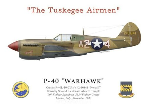 "2Lt Temple by G.Marie 332nd FG /""Tuskegee Airmen/"" Print P-40 Warhawk 99th FS"