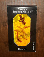 Amber Insect N Side Suckers Edible Bug Candy Rm3995