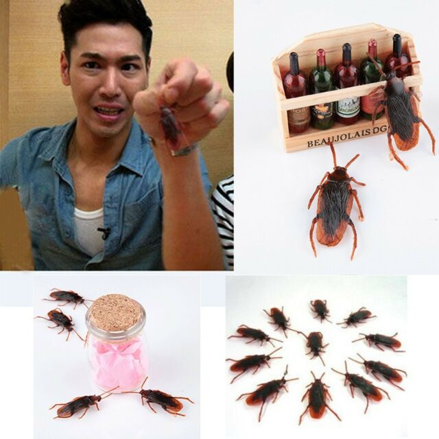 Halloween Creepy Joke Lifelike Blackbeetle Fake Roaches Cockroach Shape Toy