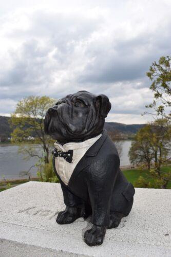 Bulldogge Figur Hund Gartenfigur Deko Wohnung Geschenkideen Rüde Anzug Dogge Neu