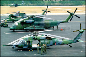 USAF-MH-53-Pave-Low-amp-MH-60-Pave-Hawk-Helicopter-Hurlburt-Field-1987-8x12-Photo