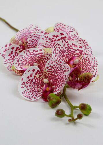 Orchidée Art Fleur environ 100 cm Orchidées branche Blanc//Fuchsia