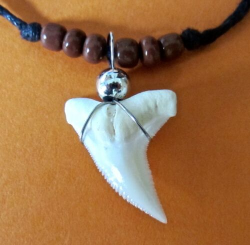 REAL SHARK TOOTH PENDANT WHITE TEETH CORD NECKLACE BROWN BEADS mens surfer boy