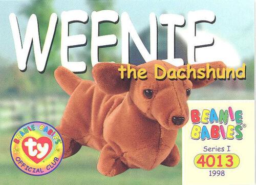 WEENIE the Dachshund TY Beanie Babies BBOC Card NM//Mint Series 1 Common