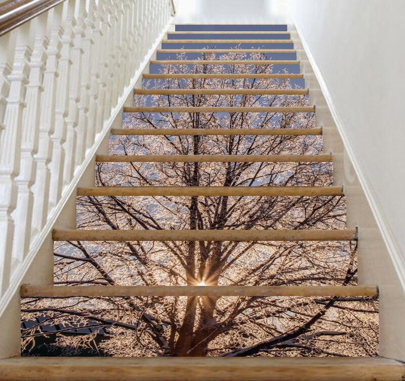 3D Tree sunrise 3 Stair Risers Decoration Photo Mural Vinyl Decal Wallpaper UK