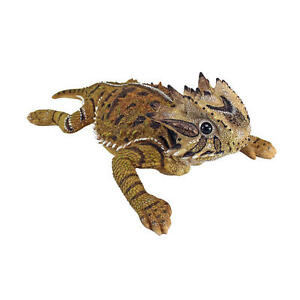 Texas Exotic Horned Lizard Garden Sculpture Horny Toad Statue