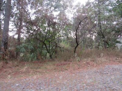 Terreno en Venta en Del Bosque