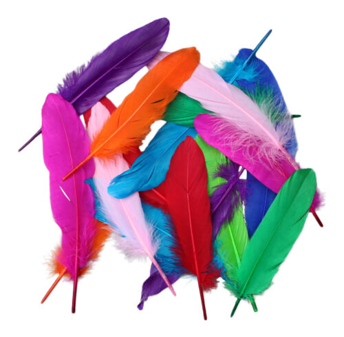 Nouveau pack de 20 15cm à 20cm artisanat plume plumes couleurs rose noir rouge etc