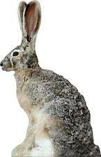 NEW Extreme Phantom HD Jack Rabbit Decoy PD-513 HD Series Coyote Varmit Predator