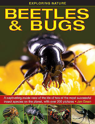 1 of 1 - Exploring Nature: Beetles & Bugs: A Captivating Inside View Of The-ExLibrary