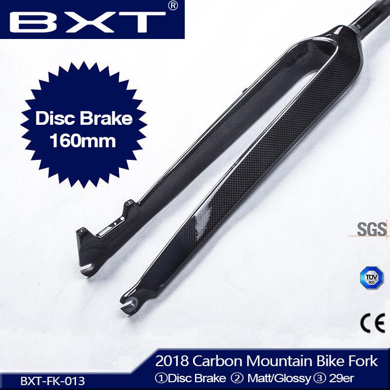 29er Full Carbon Mountain Bike Fork 118Disc Brake Rigid Forks 3k MattGlossy