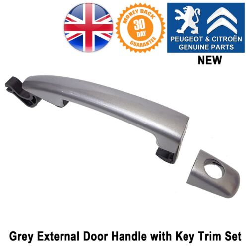 Peugeot 208 207 2008 Expert 3 Door Handle External Grey Key Hole 9101GF Genuine