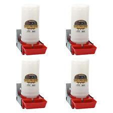 Little Giant 1 Gallon Impact Translucent Polyethylene Piglet Waterer 4 Pack