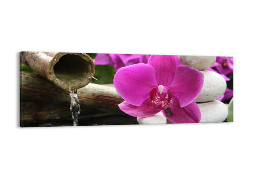 BILD LEINWAND Wandbild Orchidee Bambus Dekoration Spa 2666 DE
