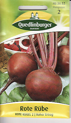 "min 50 Samen rote Beete Bete Rübe /""Stierblut/"" Beta vulgaris subsp. vulgaris"