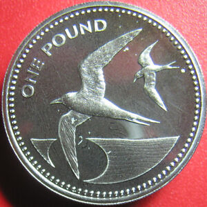 1984-SAINT-HELENA-amp-ASCENSION-POUND-SILVER-PROOF-PIEDFORT-2X-THICK-COIN-SEA-BIRD